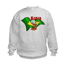 Bahia Brazil Flag Sweatshirt