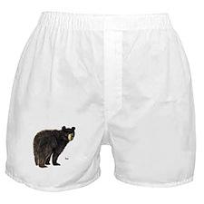 Black Bear Boxer Shorts