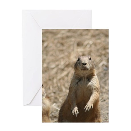 Prairie Dog Greeting Card