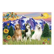 Golden 5, Husky & Samoyed Postcards (Package of 8)