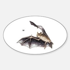Bat for Bat Lovers Oval Decal