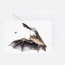Bat for Bat Lovers Greeting Cards (Pk of 10)