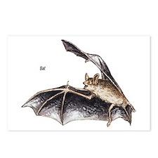 Bat for Bat Lovers Postcards (Package of 8)