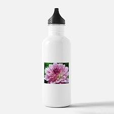 Graceful Water Bottle