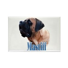 Mastiff(apricot)Name Rectangle Magnet