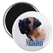 Mastiff(apricot)Name Magnet