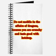 Dragon Warning Journal