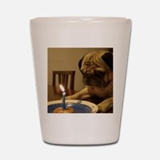 Happy Birthday Pug Shot Glass