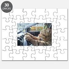 Driving Cat Puzzle