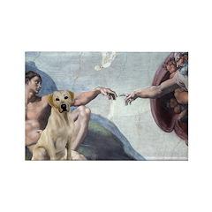 Creation/Labrador (Y) Rectangle Magnet