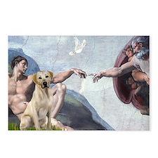 Creation/Labrador (Y) Postcards (Package of 8)