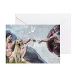 Creation/Labrador (Y) Greeting Cards (Pk of 10)