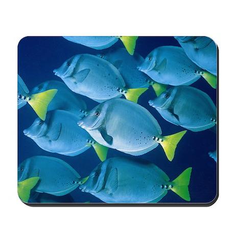 Underwater Fish Mousepad