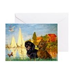 Sailboats / Dachshund Greeting Card