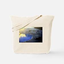 Horseshoe Falls Tote Bag