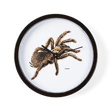 Tarantula Spider Wall Clock