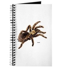 Tarantula Spider Journal