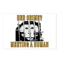 Her Crime? Postcards (Package of 8)