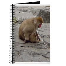snow monkey 2 Journal
