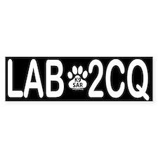 Lab 2CQ (too seek you)