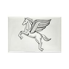 Chasing Pegasus Rectangle Magnet