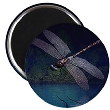 """Dragonfly at Night 2.25"""" Magnet (10 pack)"""