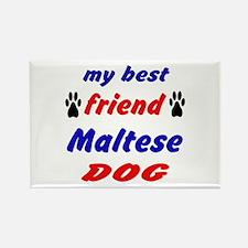 My Best Friend Maltese Dog Rectangle Magnet
