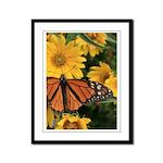 Butterfly Framed Panel Print