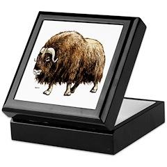 Musk Ox Artic Keepsake Box