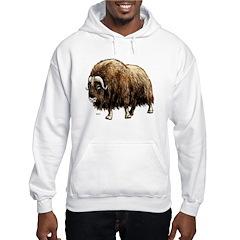 Musk Ox Artic Hooded Sweatshirt