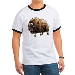 Musk Ox Artic (Front) T