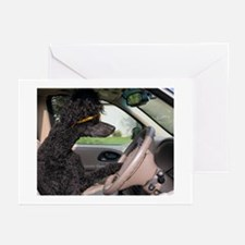 Bella driving cp cards Greeting Cards