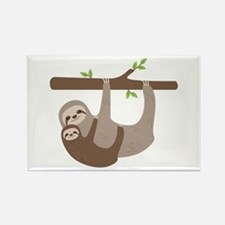 Sloths In Tree Magnets