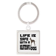Life Is Safe With A Xoloitzcuintli Square Keychain