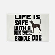 Life Is Safe With A Tr Rectangle Magnet (10 pack)