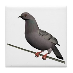Checkered Rock Dove Tile Coaster