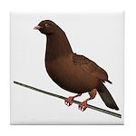 Brown Rock Dove Tile Coaster