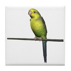 Yellow Faced Parrot Tile Coaster