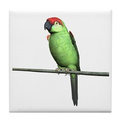 Thick Bill Parrot Tile Coaster