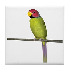 Plumhead Parrot Tile Coaster