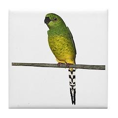 Night Parrot Tile Coaster