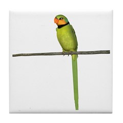 Ring Necked Parakeet Tile Coaster