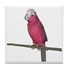 Galah Cockatoo Tile Coaster