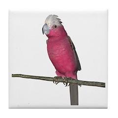 Galah Cockatoo Tile Coaster