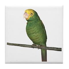 Double Yellow Amazon Parrot Tile Coaster