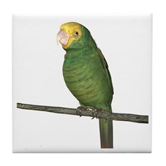 Double Yellow Amazon Parrot Tile Coaster