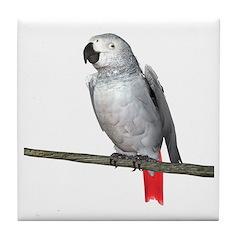 Congo African Grey Parrot Tile Coaster