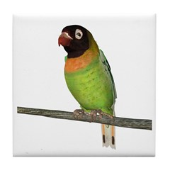 Black Cheeked Lovebird Tile Coaster