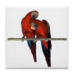 Scarlet Macaw (Pair) Tile Coaster
