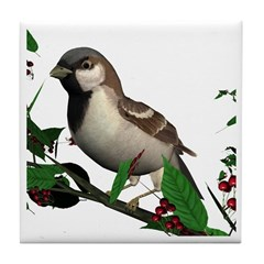 House Sparrow (male) Tile Coaster